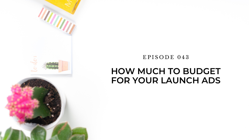 43. Day 24: How Much To Budget For Your Launch Ads