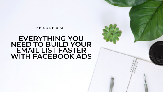 03: Everything You Need to Build Your Email List Faster With Facebook Ads